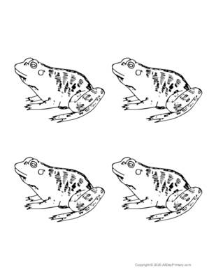 Parts of a Frog Coloring Sheet.pdf