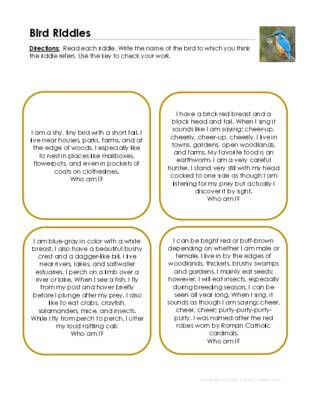 Bird Riddles.pdf