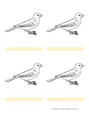 Parts of a Bird Writing Sheets.pdf