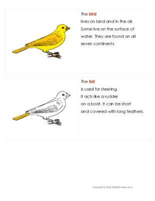 The Bird Definitions Booklet.pdf