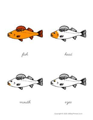 Parts of a Fish Control Chart.pdf
