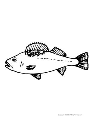 Single Fish Coloring Page.pdf