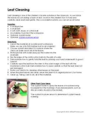 Leaf Cleaning.pdf