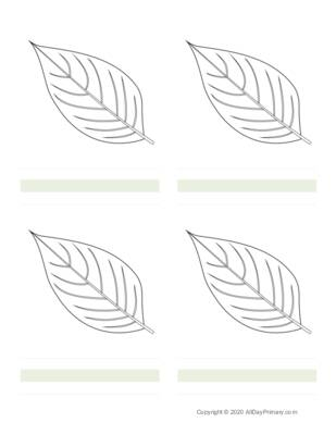 Parts of a Leaf Writing Sheets.pdf