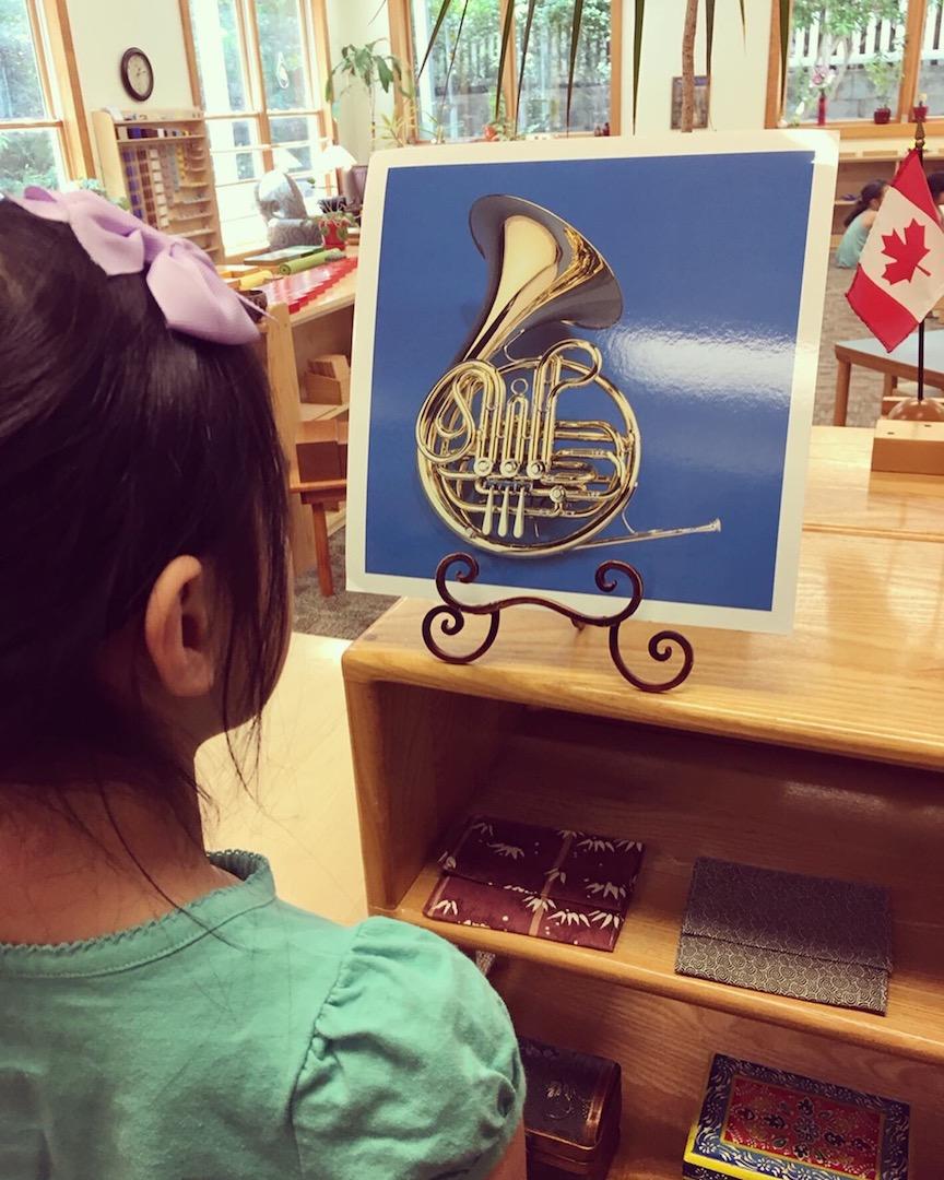 admire instrument cards