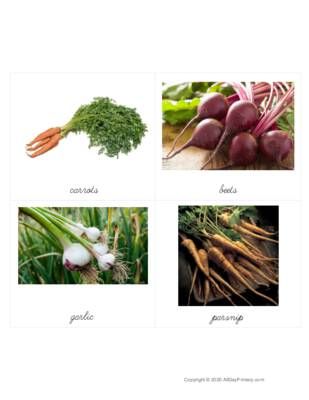 Root Vegetable Classified Cards.pdf