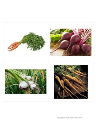 Root Vegetable Classified Cards Without Labels.pdf