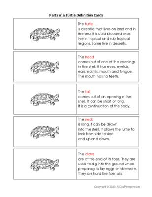Parts of a Turtle Definition Cards.pdf