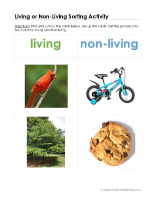 Living or Non Living Sorting.pdf