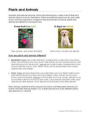 Plant and Animal Classification.pdf