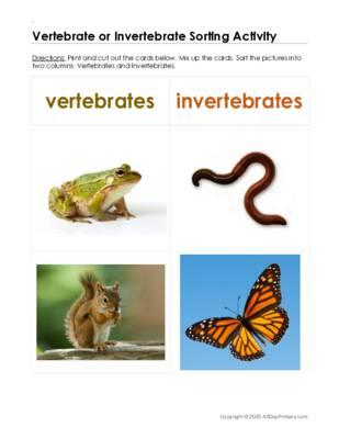 Vertebrate or Invertebrate Sorting.pdf